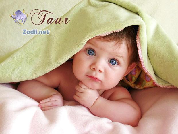 copilul taur